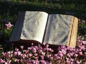 Groupe d'étude biblique œcuménique du Revoyet : première séance le 14 Septembre